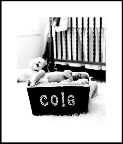 Cole_2007